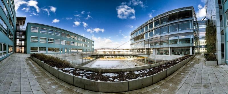 univerzita texasových seznamovacích služebseznamka v Dillí